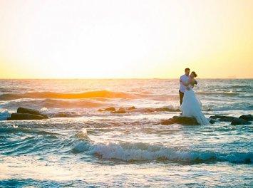 Dan Bale Nunta Satu Mare