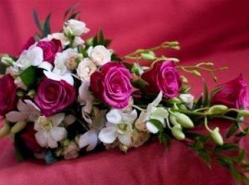 Floraria Suta Nunta Satu Mare